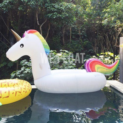 sunny-unicorn-wefloatbali