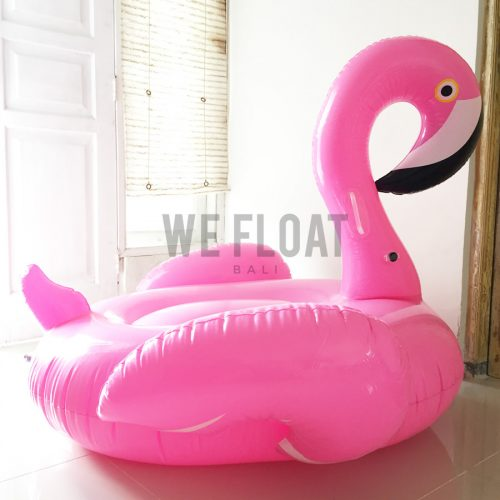 petite-beak-flamingo-3-wefloatbali