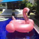 Big-Giant-Rose-Gold-Flamingo-Float-5-WeFloatBali